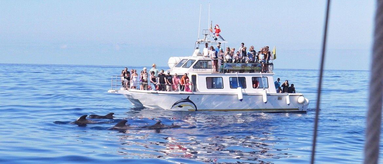 Catamaran Nashira uno