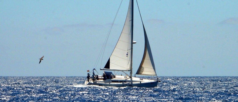 Alquiler de velero en Tenerife